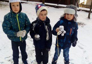 Zimowe spacery. Aktywność ruchowa!