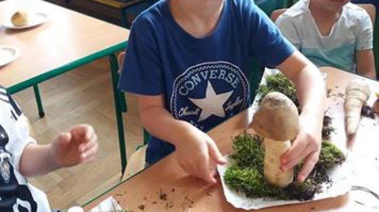 Warzywne grzybki