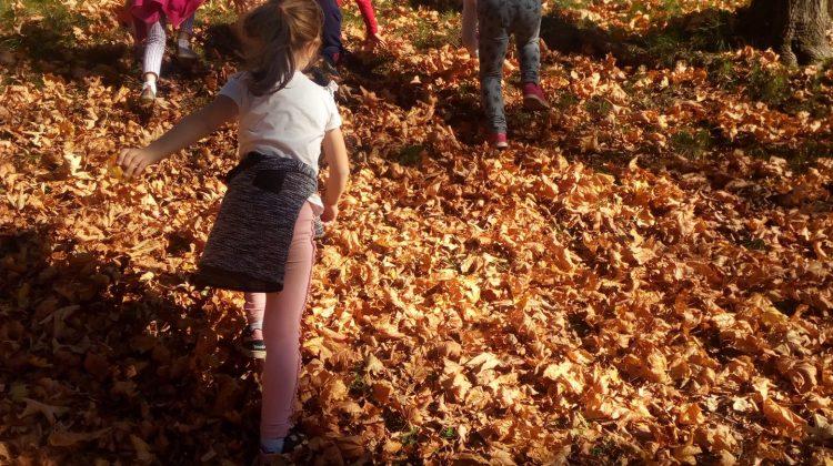 Zabawy z jesiennym słońcem