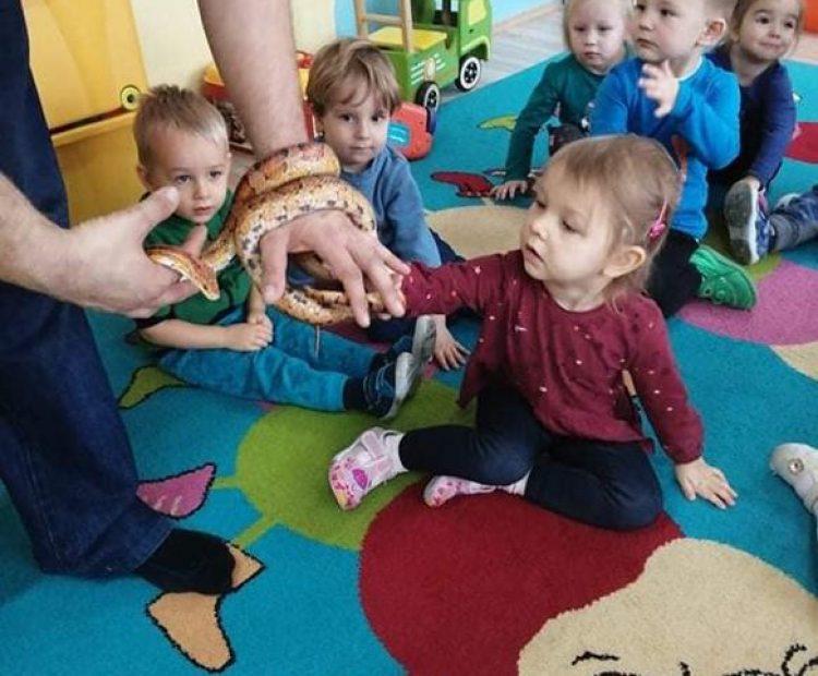 Spotkanie z wężami.